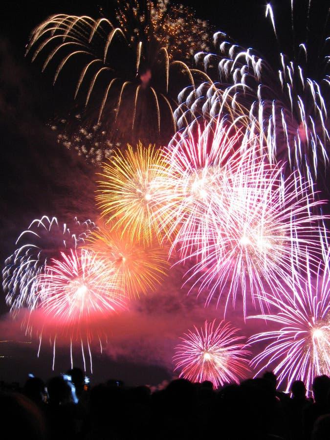Varietà di fuochi d'artificio fotografia stock libera da diritti