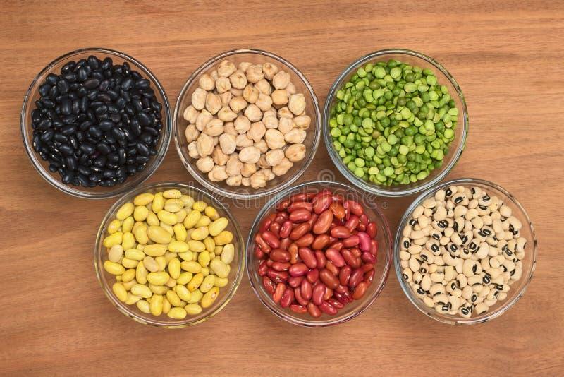Varietà di legumi fotografia stock
