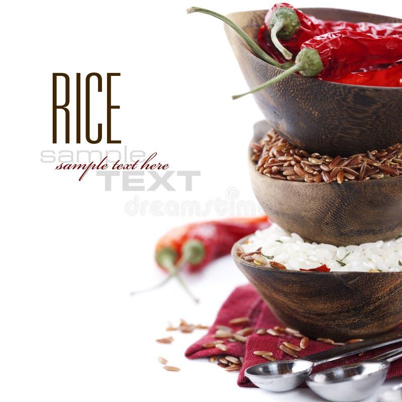 Varietà di riso fotografia stock libera da diritti