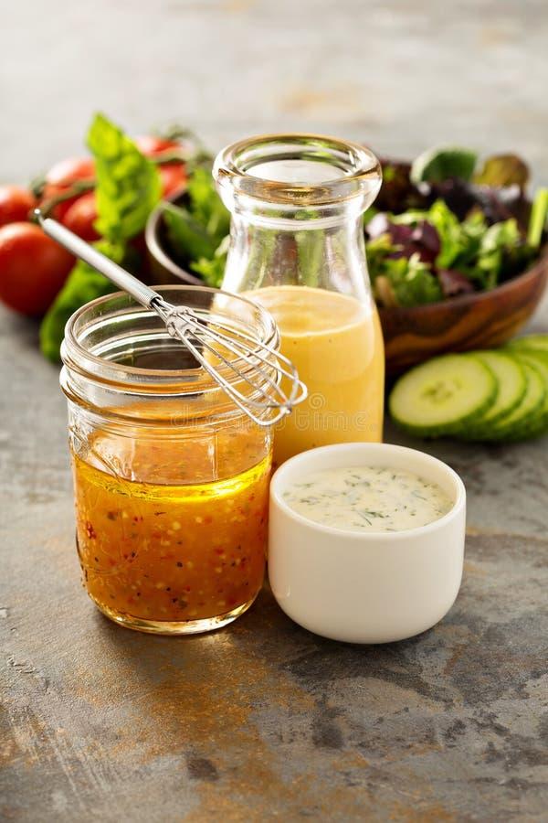 Varietà di salse e di condimenti dell'insalata fotografie stock libere da diritti