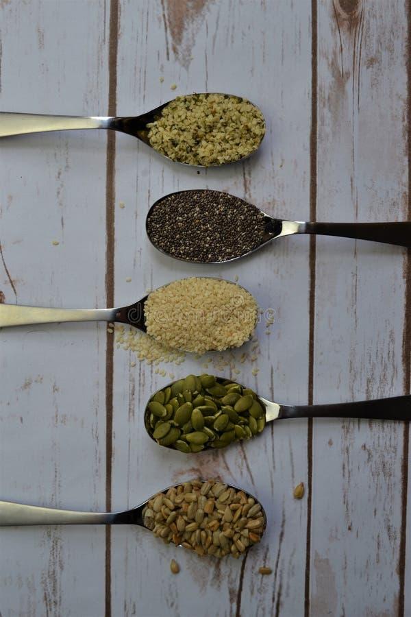 Varietà di semi in cucchiai d'argento immagini stock