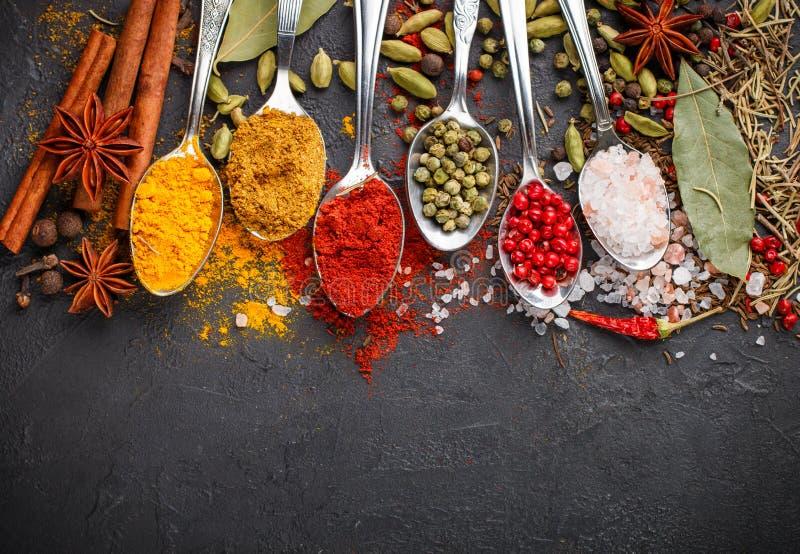 Varietà di spezie, di condimenti e di erbe naturali in cucchiai fotografie stock