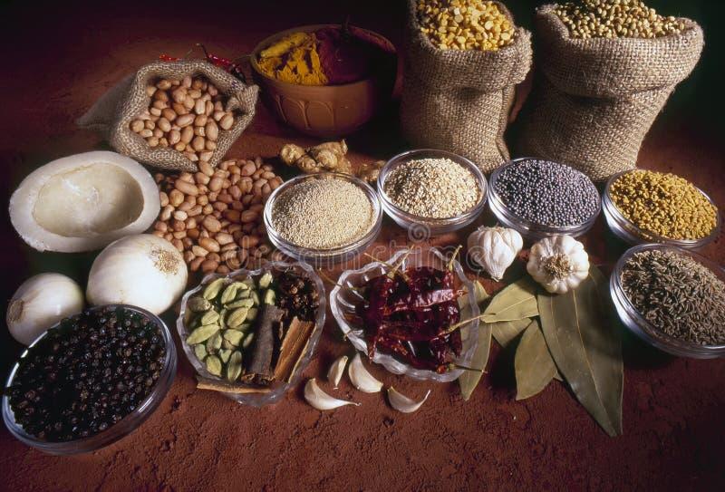 Varietà di spezie utilizzate nei prodotti in curry e in altri piatti indiani, India e Asia fotografia stock