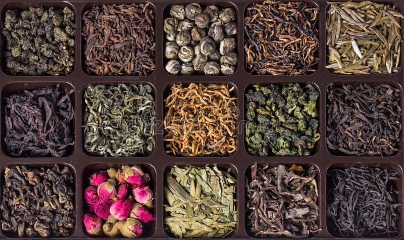 Varietà differenti di tè cinese immagini stock