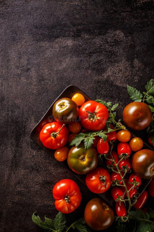 Varieties of colorful tomatos stock image