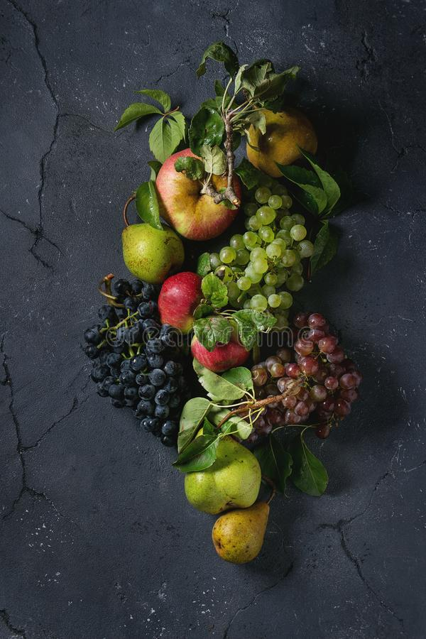 Variety of autumn fruits stock image