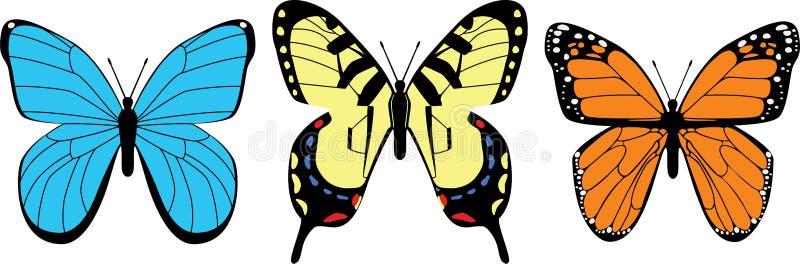 Download Variety of Butterflies stock vector. Image of orange - 21843183