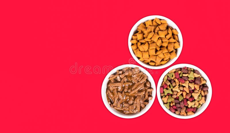 Variety of cat food. cat food copy space. set cat food royalty free stock image