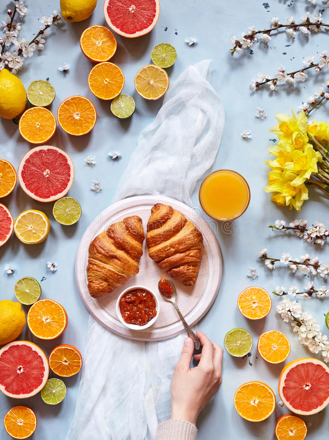 A variety of citrus fruits with fresh croissants, jam and juice on a light blue background with spring flowers stock image