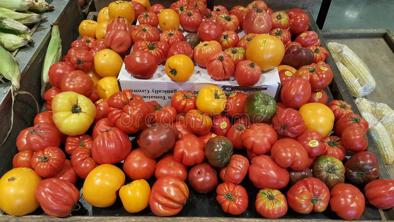 Variety of colorful heirloom tomatoes stock photography