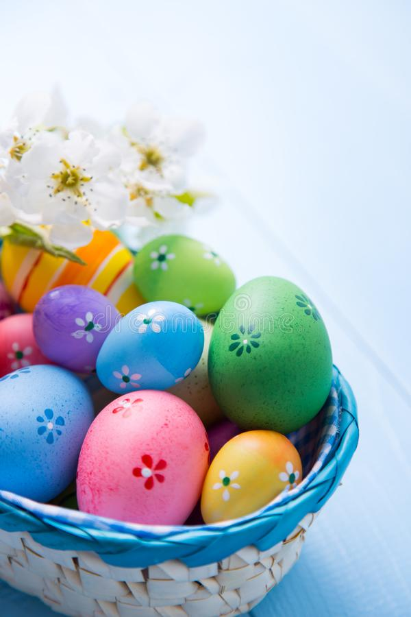 Variety of decorated colorful Easter eggs in basket with white spring flowers on light blue background royalty free stock images