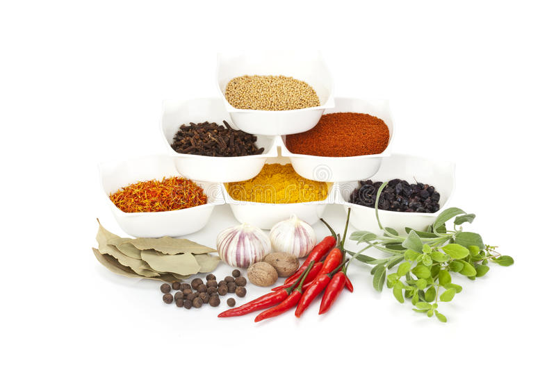 Variety of different spices royalty free stock images