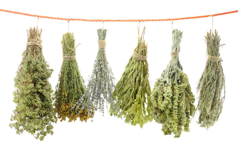 Variety of dried herbs. Hanging on a rope stock photos