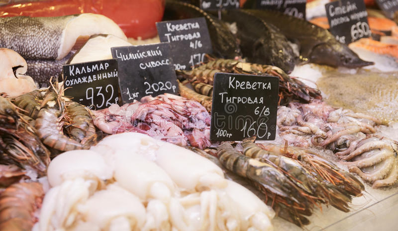 Download Variety Of Fish And Seafood Stock Photo - Image: 19131678