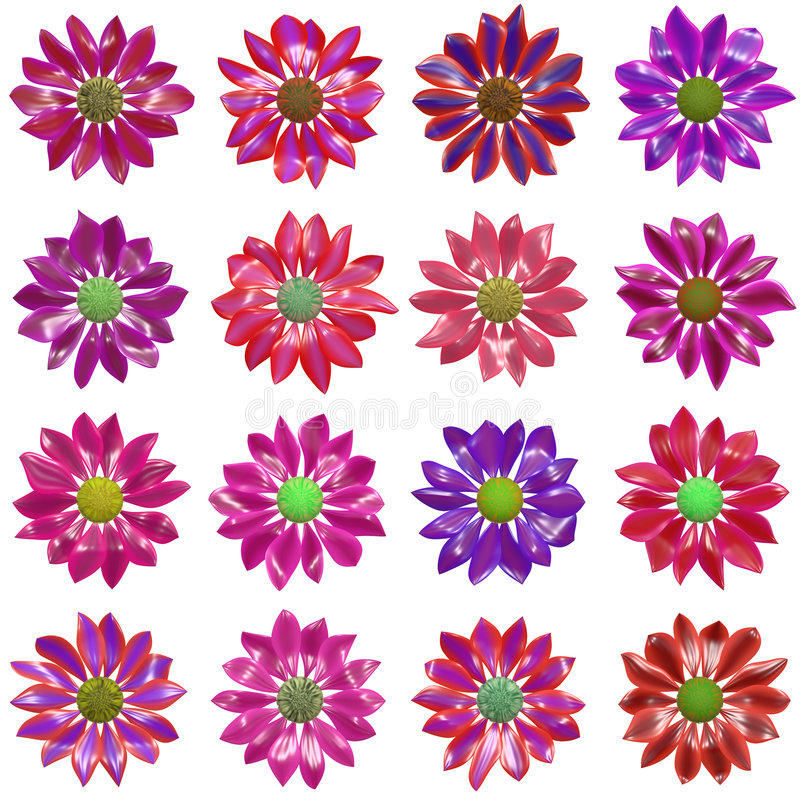 Variety of Flowers