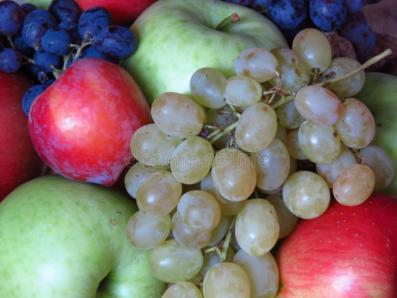 Variety of fresh autumn fruit. Rich autumn organic fruit harvest. Green and red apples, grapes, plums. Agriculture, organic farming, diet, fruit, summer royalty free stock image