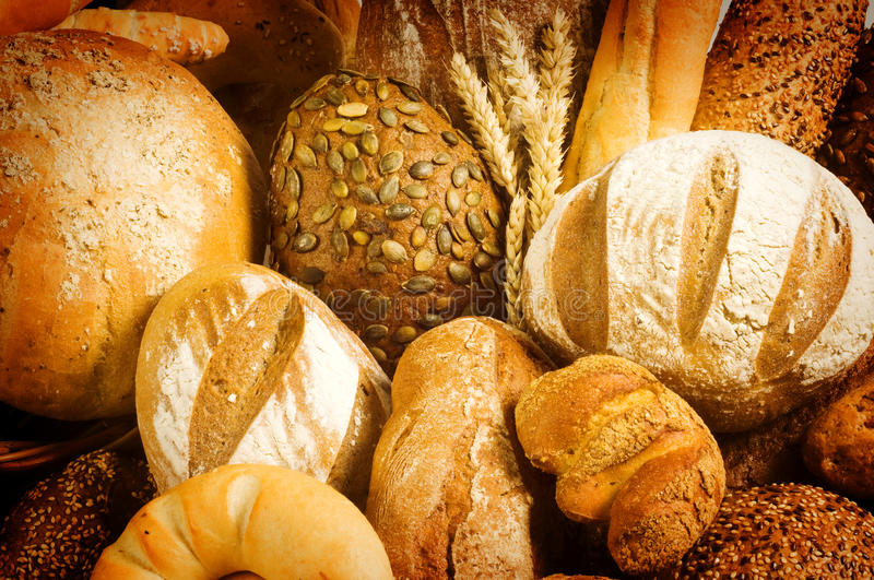 Download Variety of fresh bread stock photo. Image of whole, brown - 10686098