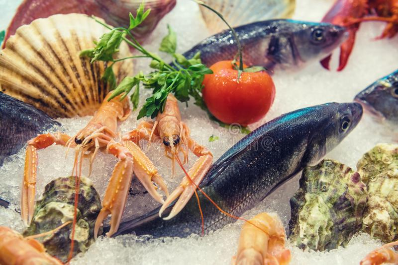 Variety of fresh sea food and vegetables on ice royalty free stock image