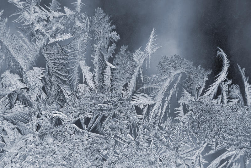 Variety of frost patterns on a winter window. The variety of frost patterns on a winter window stock image