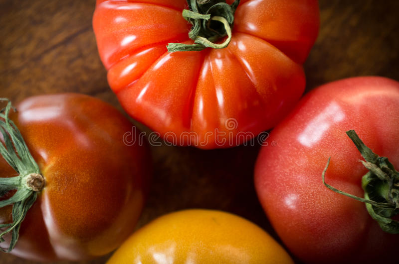 Variety Heirloom Tomatoes. Colorful juicy heirloom or heritage tomatoes on wooden table royalty free stock photo