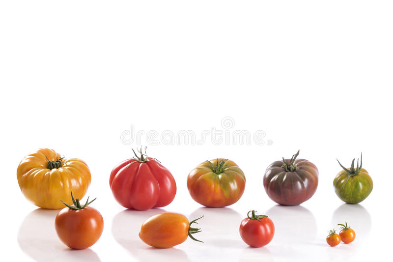 Variety of Heirloom tomatoes royalty free stock images