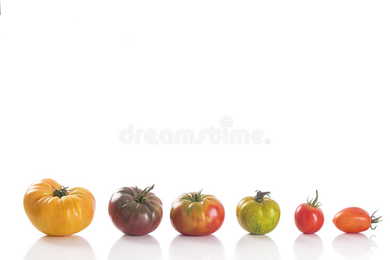 Variety of Heirloom tomatoes stock image