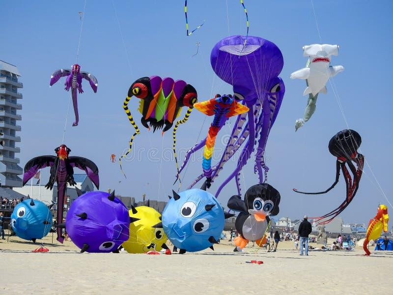Variety of Huge Kites In-Flight stock photo
