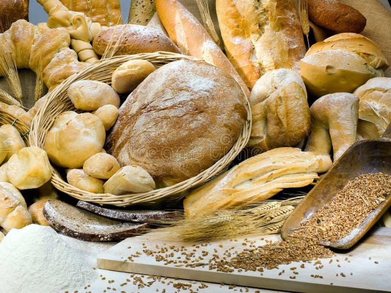 Variety of Italian bread. Delicious variety of Italian bread royalty free stock photos