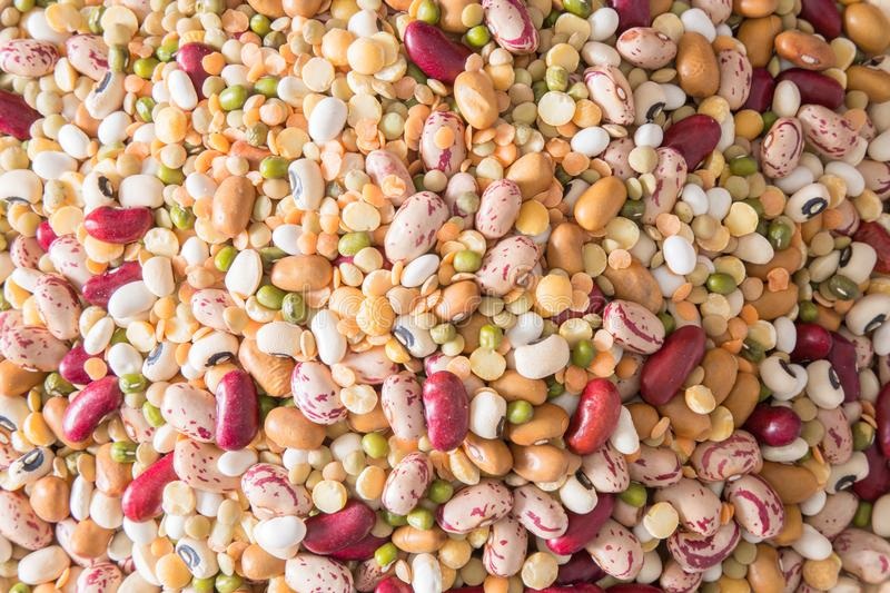 Variety of legumes royalty free stock image
