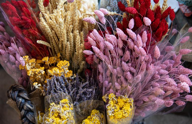 Variety of natural plant dried flowers home decorative eternal flower bouquets of floral grass multicolored gems, lavender, tansy royalty free stock photos