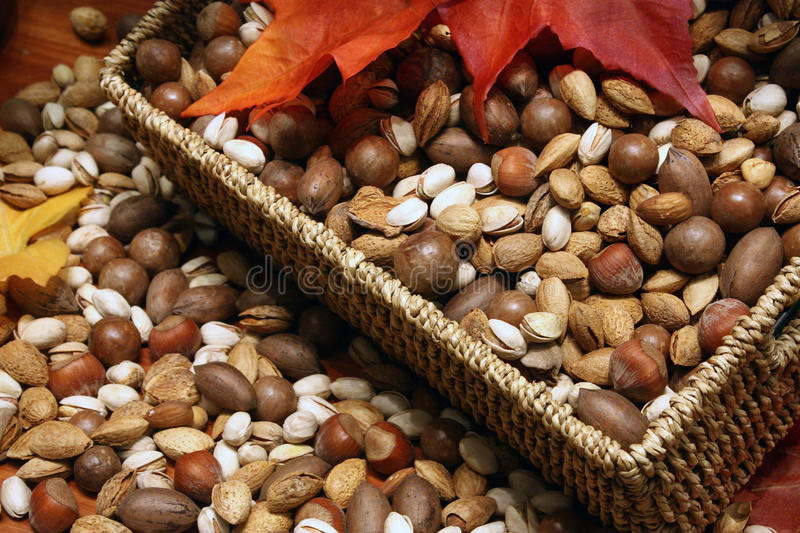 Variety of Nuts. On Display stock photography