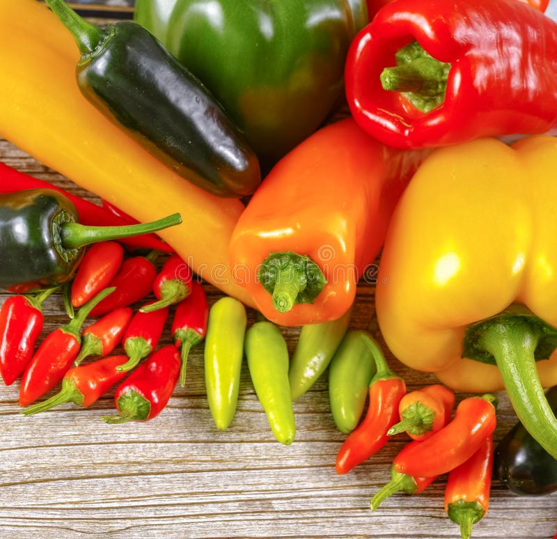 Variety of peppers, paprika, sweet and chili royalty free stock photography