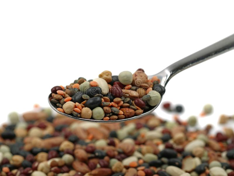 Variety of protein rich colorful legumes on silver spoon with copy space, close up royalty free stock image