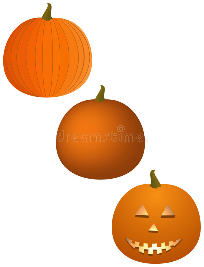 Variety of Pumpkins royalty free illustration