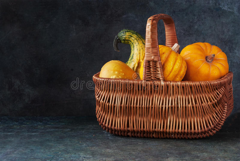 Download Basket with pumpkins stock photo. Image of concept, horizontal - 98894938