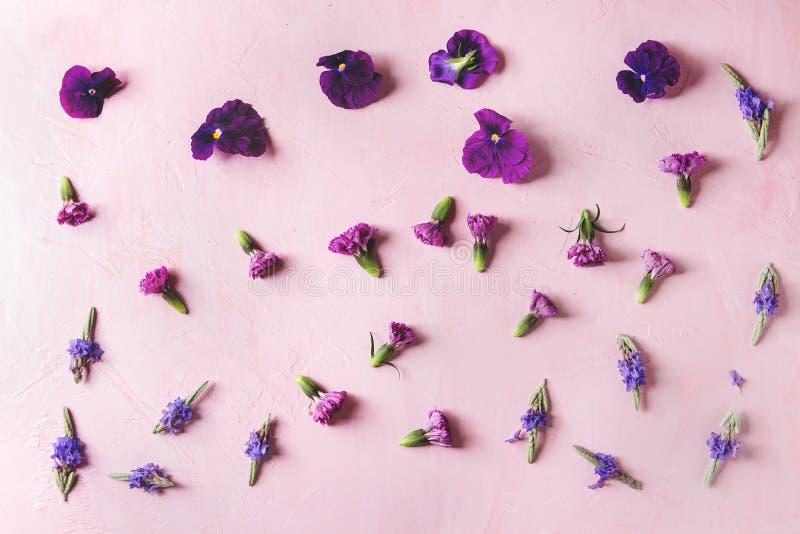 Purple edible flowers royalty free stock image