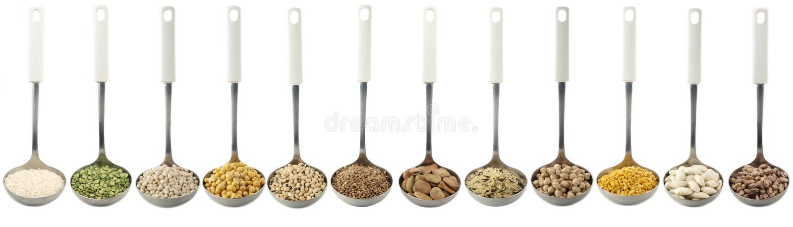 Variety of raw legumes and rices in ladles - white background. Variety of raw legumes and rices in ladles on white background stock photography