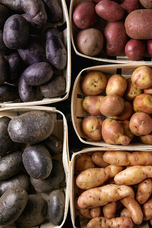 Variety of raw potatoes royalty free stock image