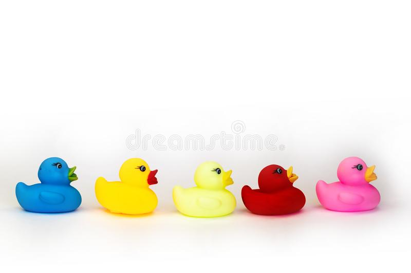 Variety of rubber bath ducks isolated background. Toy play for kid ducky floating. royalty free stock photo
