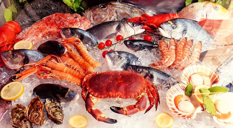 Variety of sea food stock photography