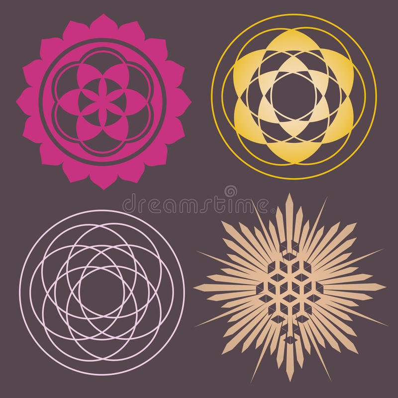 Download Variety Of Seed Forms Print Stock Vector - Image: 29067944