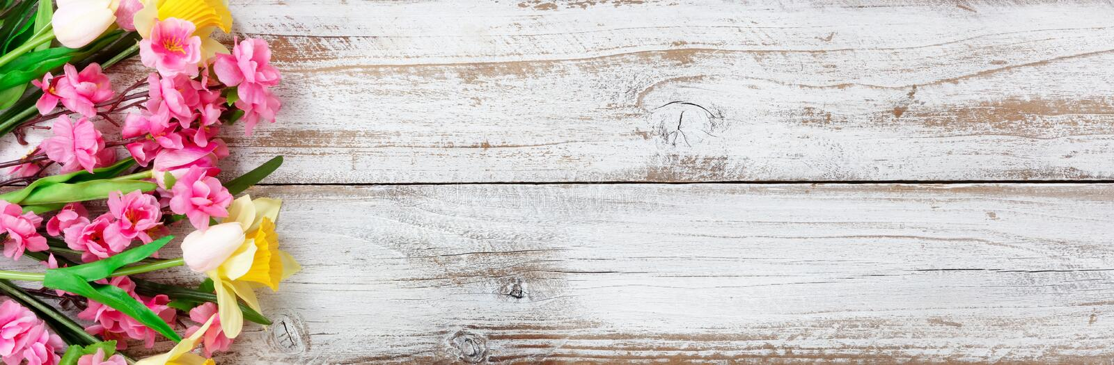 Springtime flowers on white rustic wooden background for seasonal holidays like Easter and Mothers Day stock image