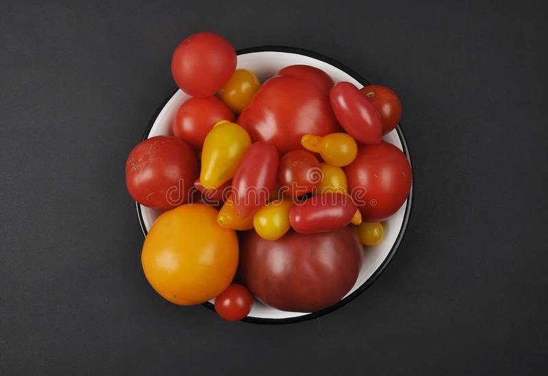 Variety of tomato cultivars in enamel bowl on black background royalty free stock images