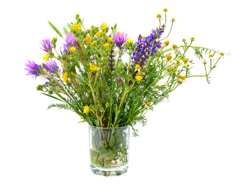 Variety of wild flowers in a glass isolated on white. Background stock photography