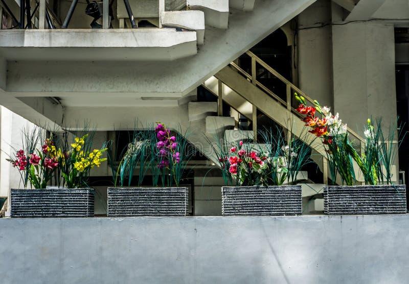 Vario genere di fiori colourful in vaso per la decorazione vicino alle scale Jakarta contenuta foto Indonesia fotografie stock