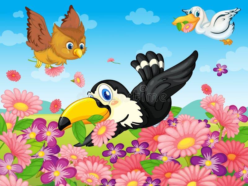 Varios pájaros libre illustration