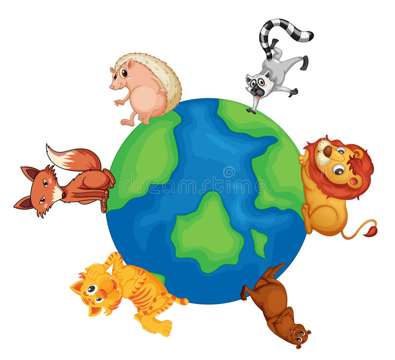 Various Animals On Earth Royalty Free Stock Images