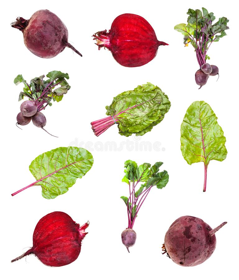 Various beet roots and greens isolated on white royalty free stock photography