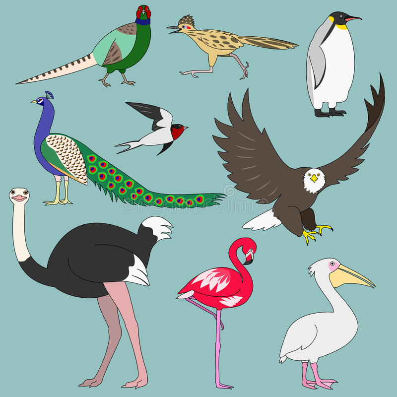 Various birds. Set of various hand drawn birds stock illustration