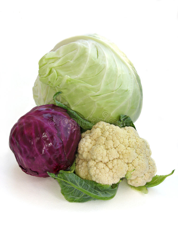 Various of cabbages. Heads of white and red cabbages, cauliflower on a white background stock photos